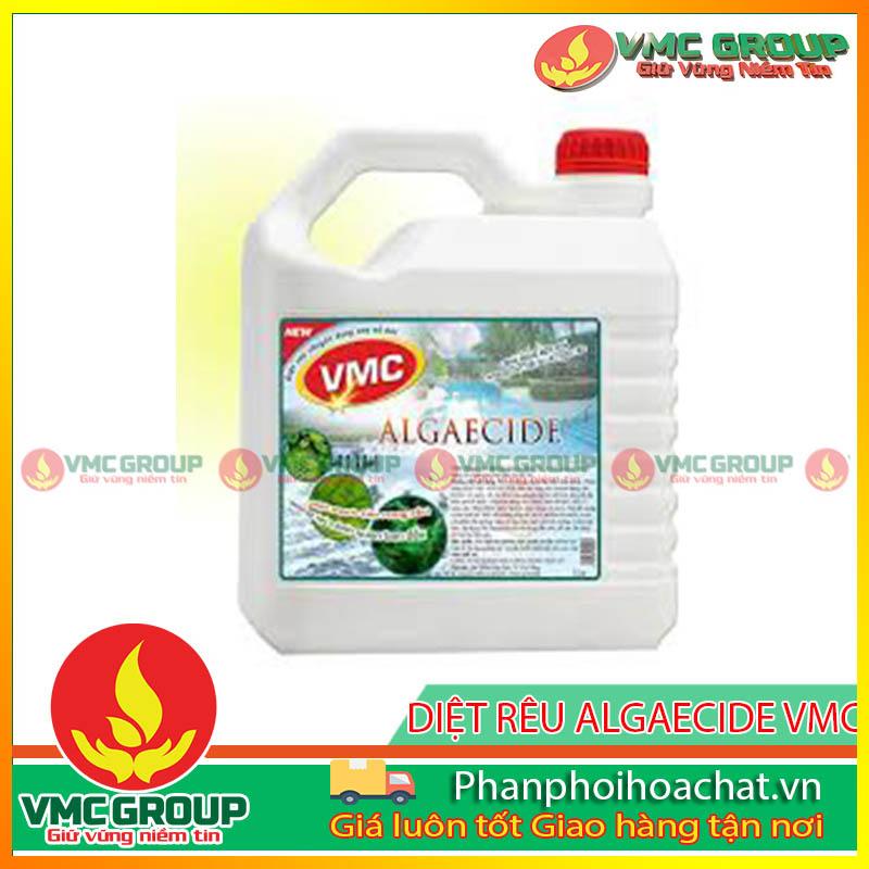 vmc-algaecide-diet-tao-chuyen-dung-cho-ho-boi-pphcvm