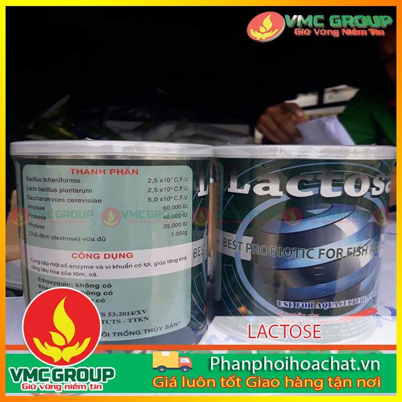 men-tron-ho-tro-duong-ruot-lactose-pphcvm-2