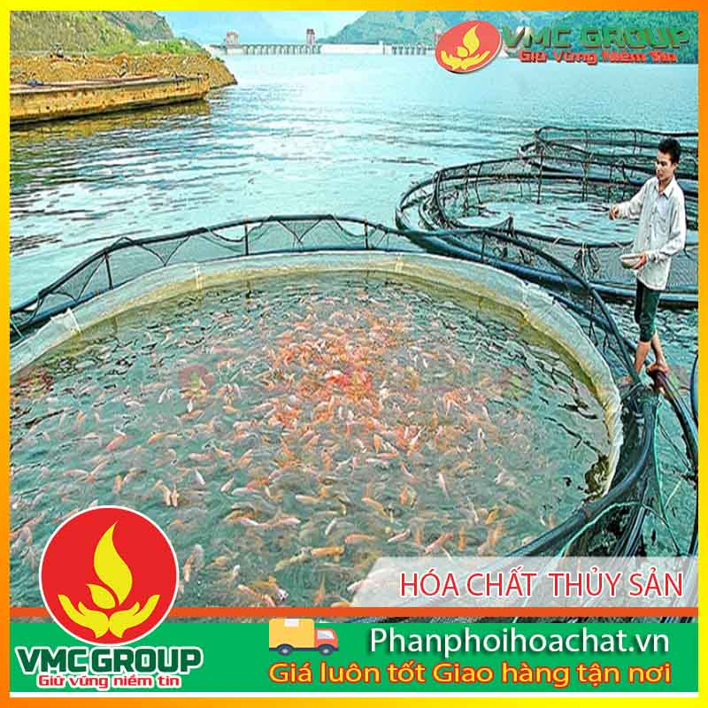 danh-muc-hoa-chat-nuoi-thuy-san-pphcvm