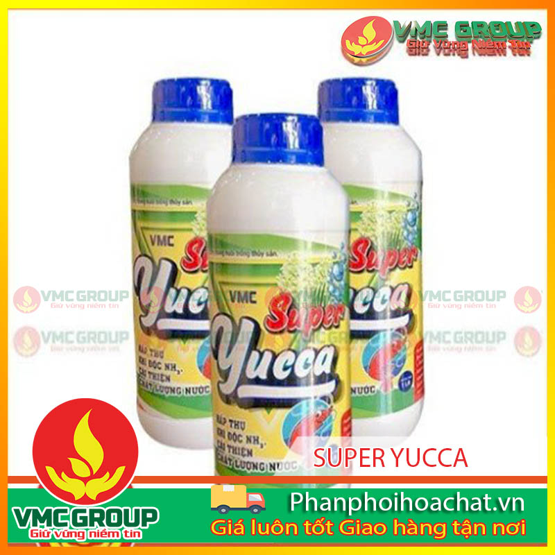 super-yucca-dung-trong-thuy-san-pphcvm