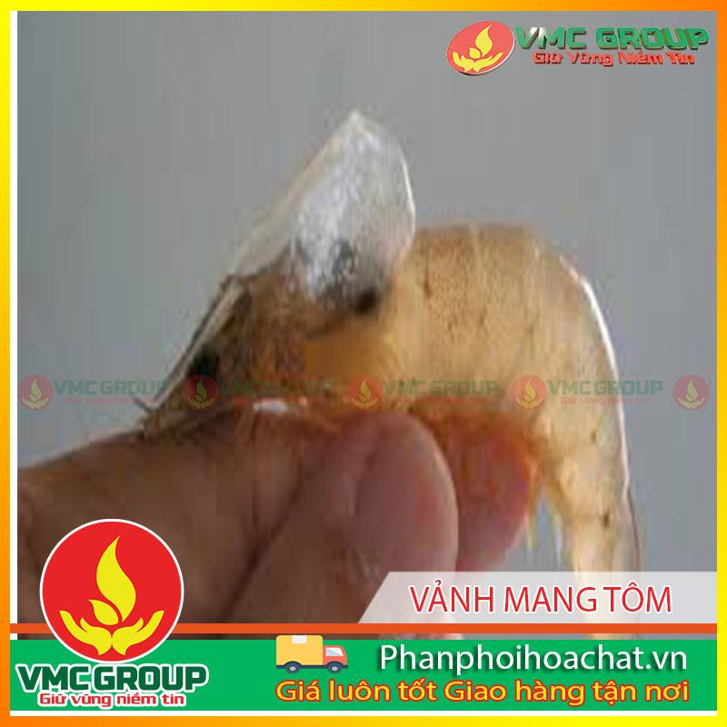 vanh-mangbenh-moi-tom-xuat-hien-o-tra-vinh-pphcvm